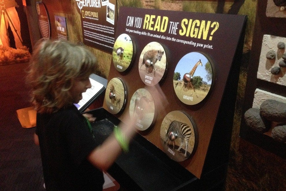Interactive exhibits allows kids of all ages to explore at their own pace