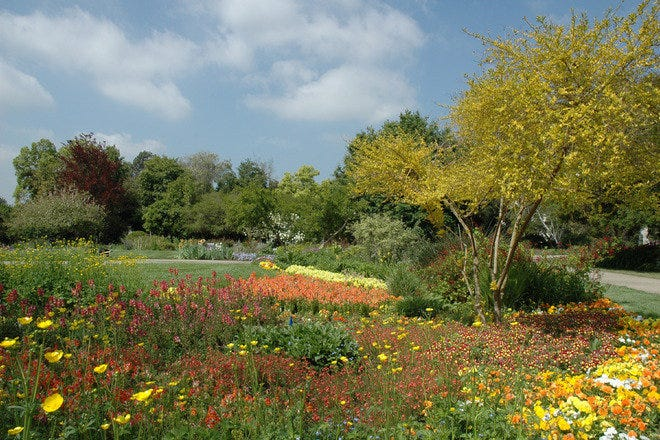 The Huntington Library Art Collections And Botanical Gardens Los Angeles Attractions Review 10best Experts And Tourist Reviews