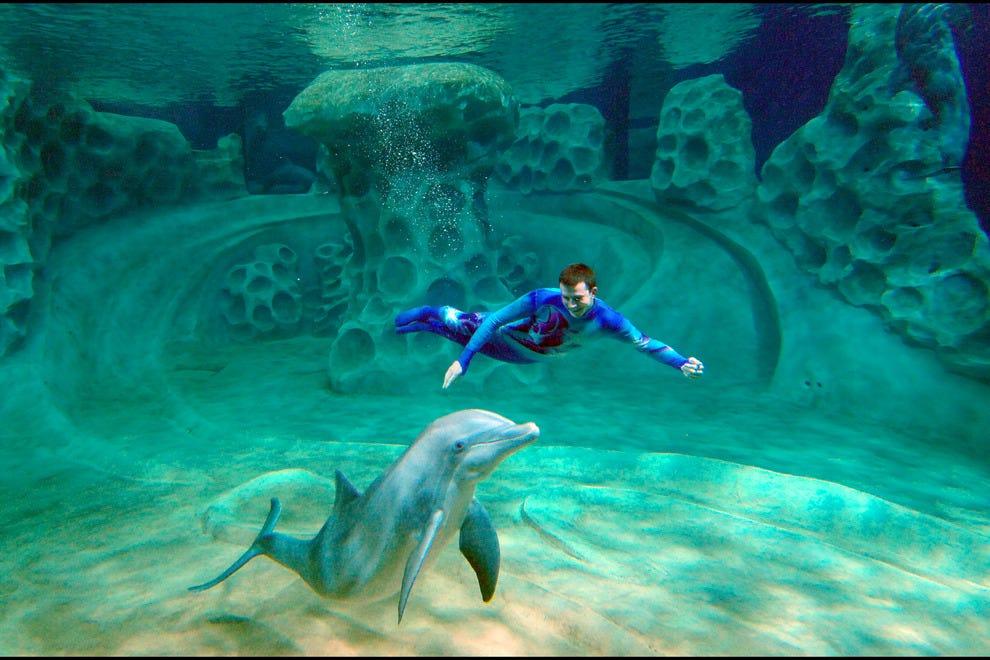 Best Aquarium Winners: 2014 10Best Readers' Choice Travel Awards