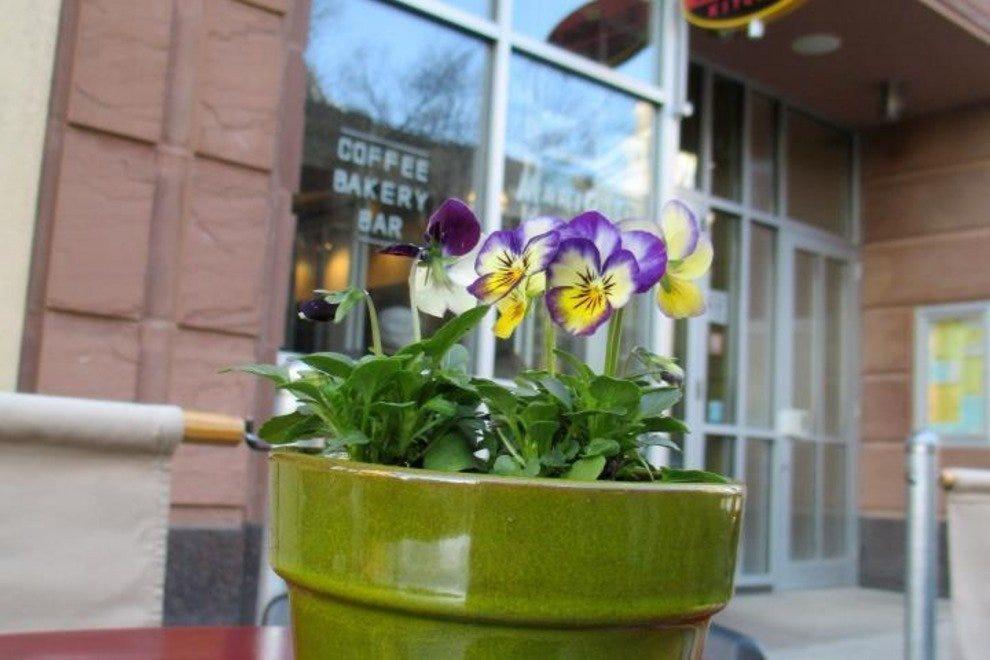 Marigold Kitchen & Marigold Kitchen: Madison Restaurants Review - 10Best Experts and ...