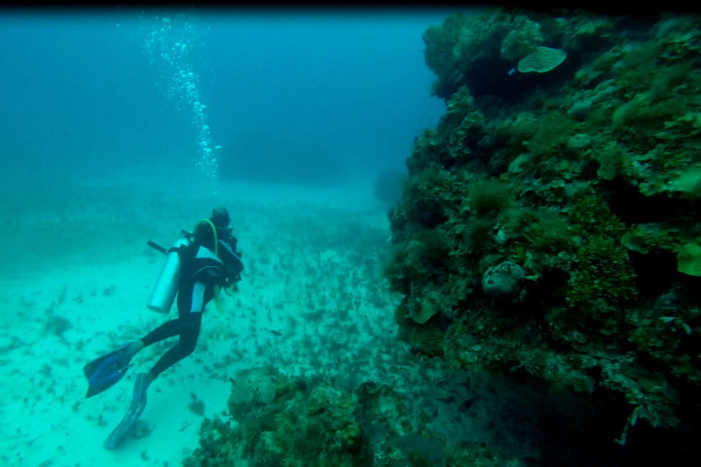 What To Expect When Scuba Diving In Jamaica