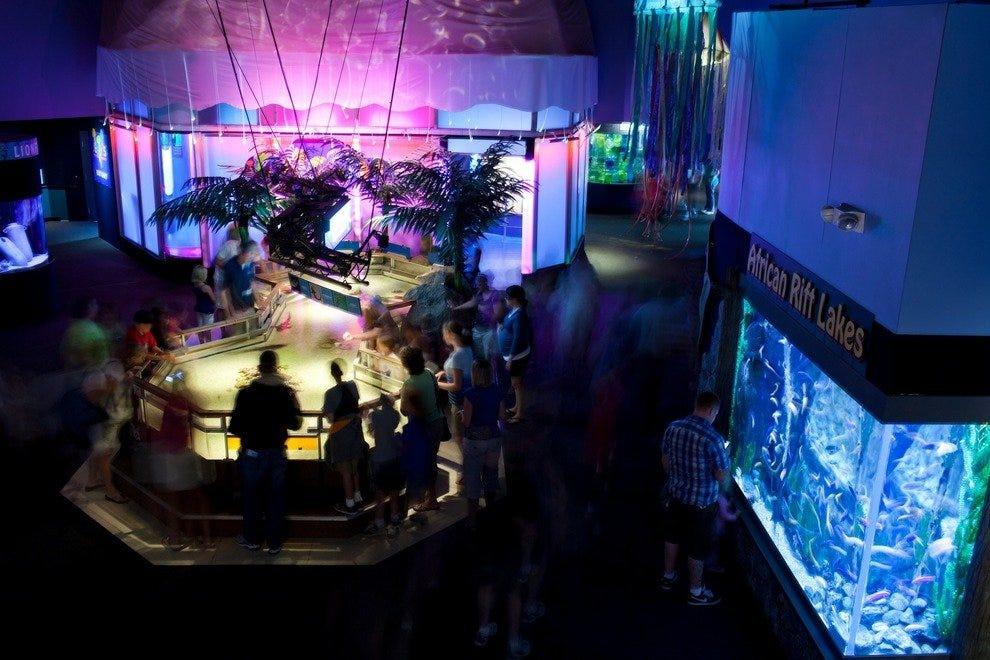 10best Readers 39 Choice Winners Best Aquarium Trip