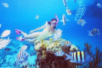 Scuba Diving & Snorkeling in Nassau
