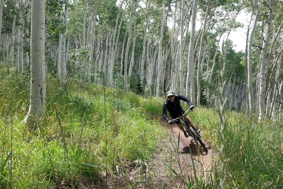 Zipping past aspens