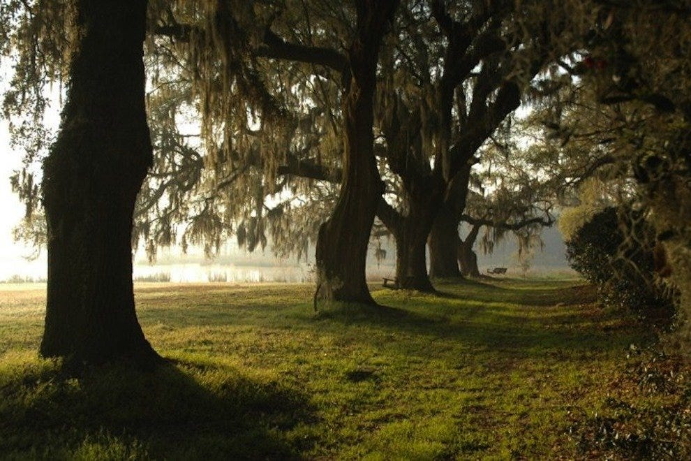 Charleston Plantations: 10Best Attractions Reviews
