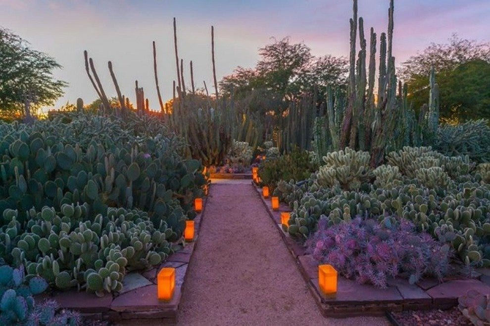Las Noches De Las Luminarias Best Attractions In Scottsdale