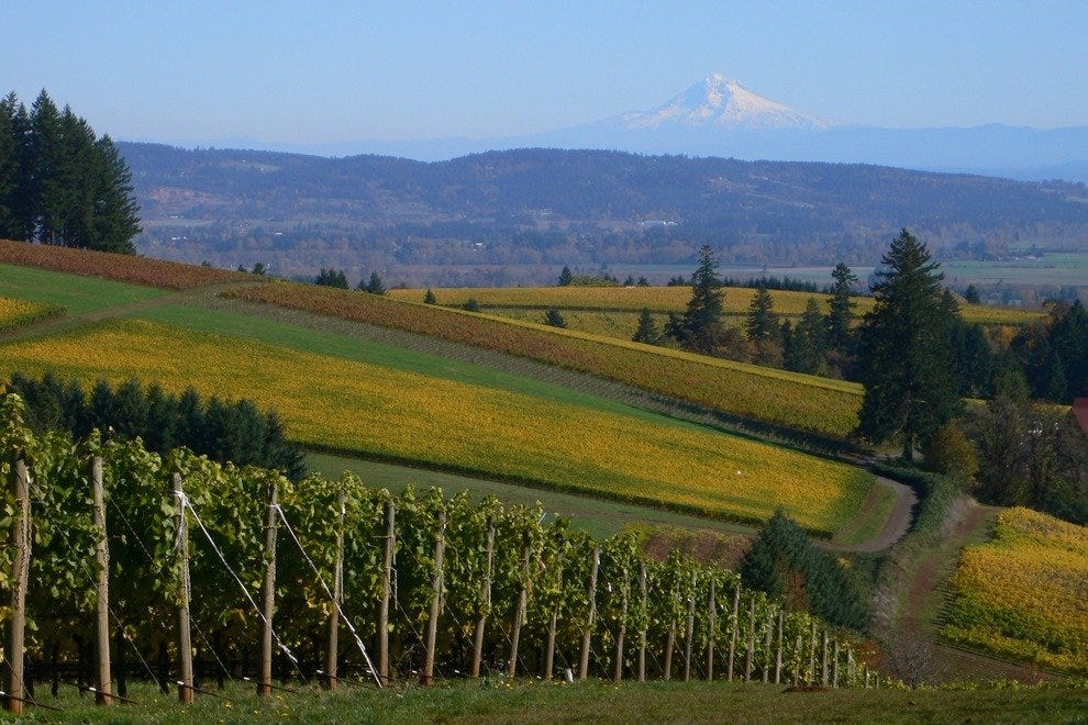 Oregon wine country is a feast for the senses.