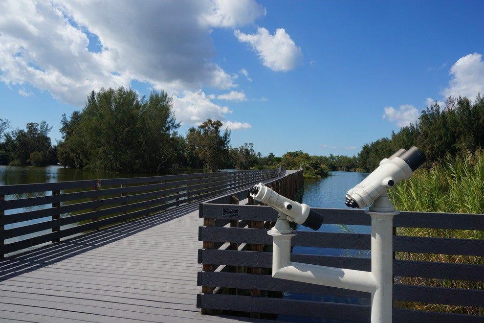 观察设备是完美的鸟类和发现其他野生动物在公园