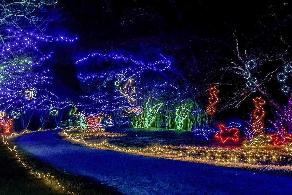 Dominion Garden of Lights-Norfolk Botanical Garden