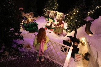 The Enchanted Forest Festival of Trees: A Winter Wonderland
