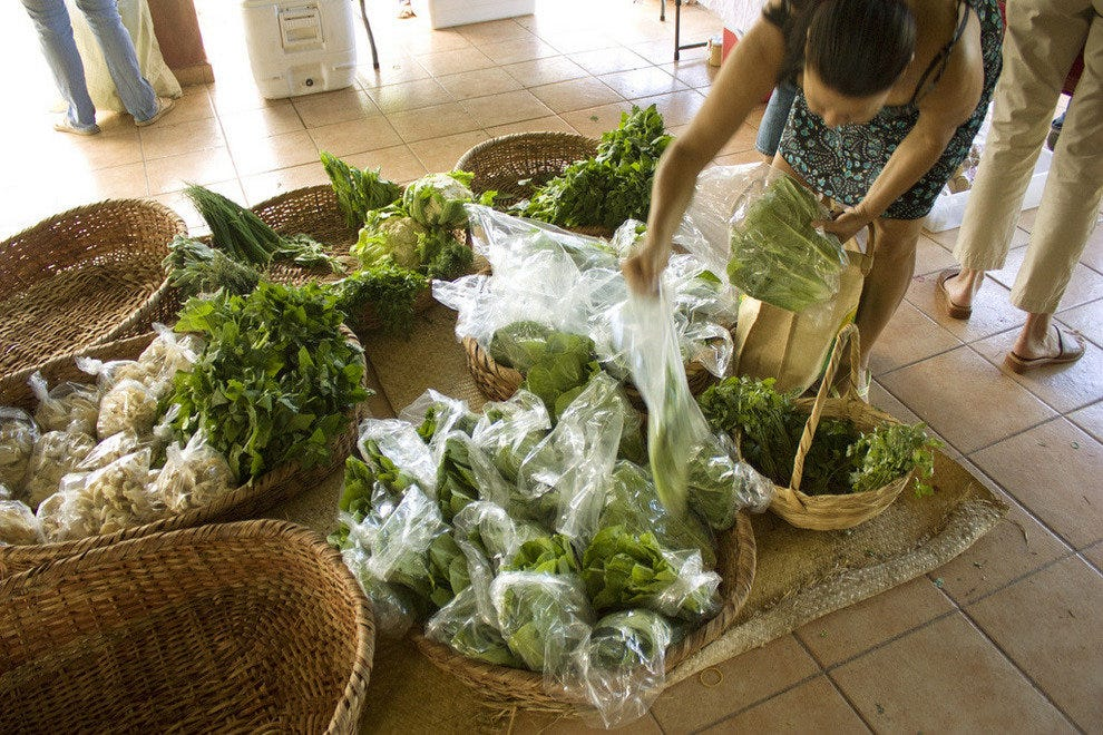 Central Farmer's Market Escazú: Costa Rica Shopping Review