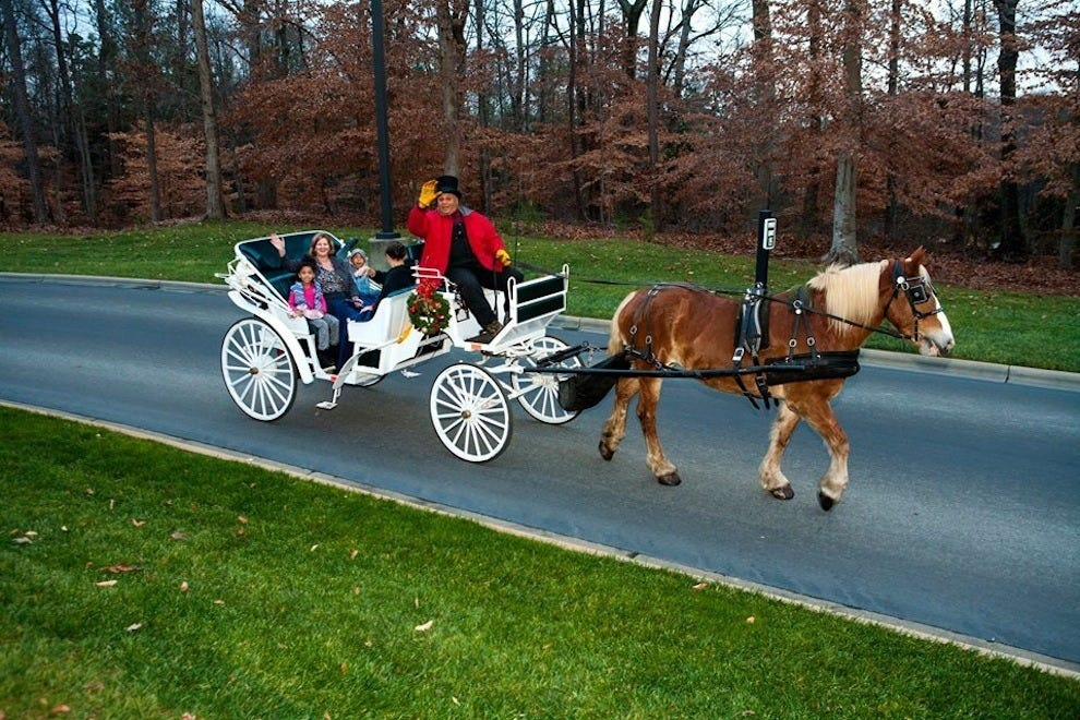 Go on a carriage ride at Christmas at the Library