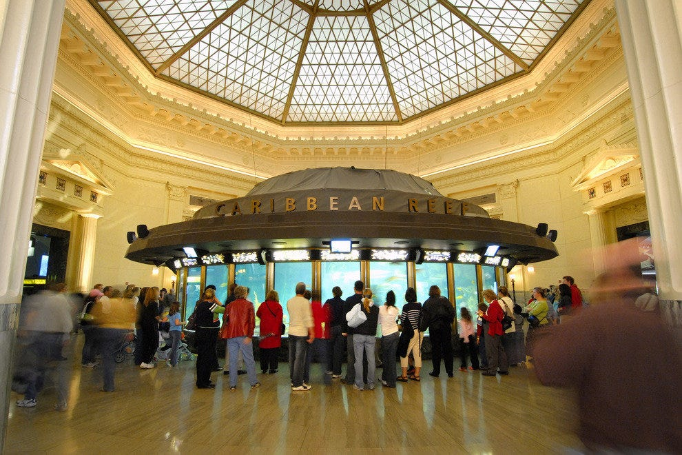 The John G. Shedd Aquarium in Chicago is the world's largest indoor aquarium