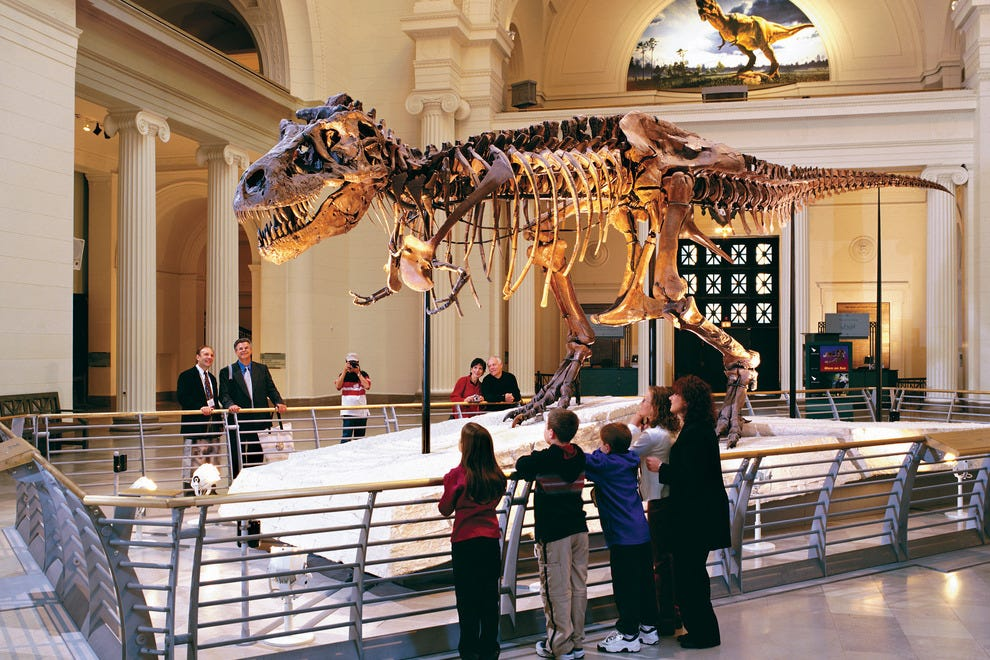 The Field Museum in Chicago is one of the largest natural history museums in the world