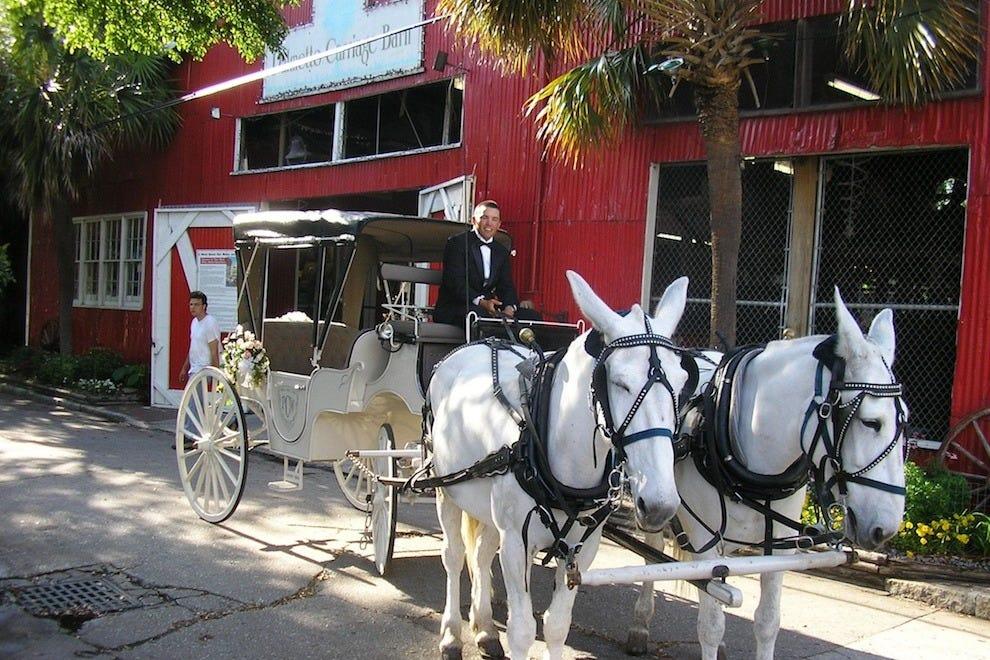 Charleston Sc Carriage Tours Reviews