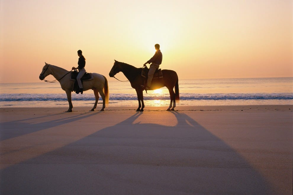 Kelly Seahorse Ranch: Jacksonville Attractions Review ... Horseback Riding On The Beach Photography