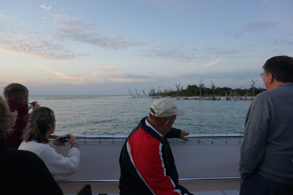 Passengers keep cameras ready, waiting for dolphins to surface at sunset