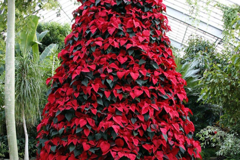 Birmingham Botanical Gardens Birmingham Attractions