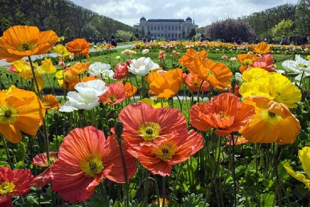Jardin des plantes paris attractions review 10best for Plantes des jardins