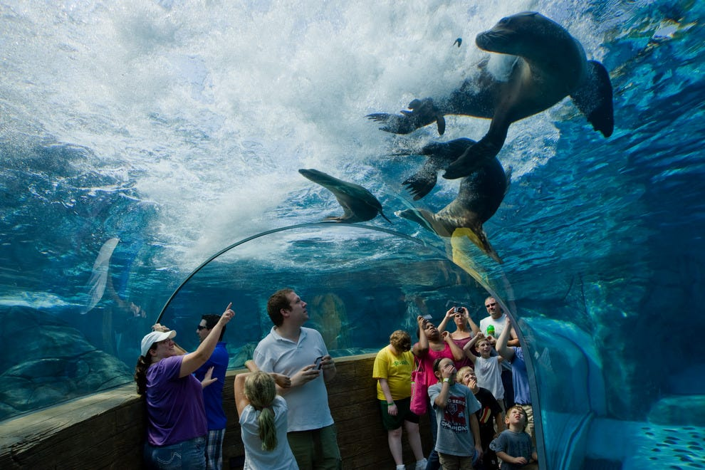 Best Zoo Exhibit Winners 2015 10best Readers 39 Choice