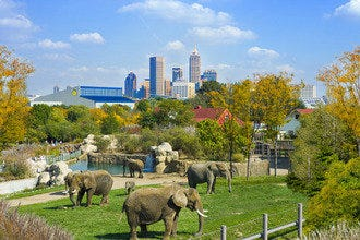 Tips and Picks for the Best Sightseeing in the Greater Denver Area