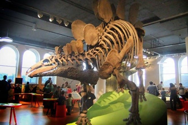 Great Attractions to Keep Your Kids Entertained in Edinburgh