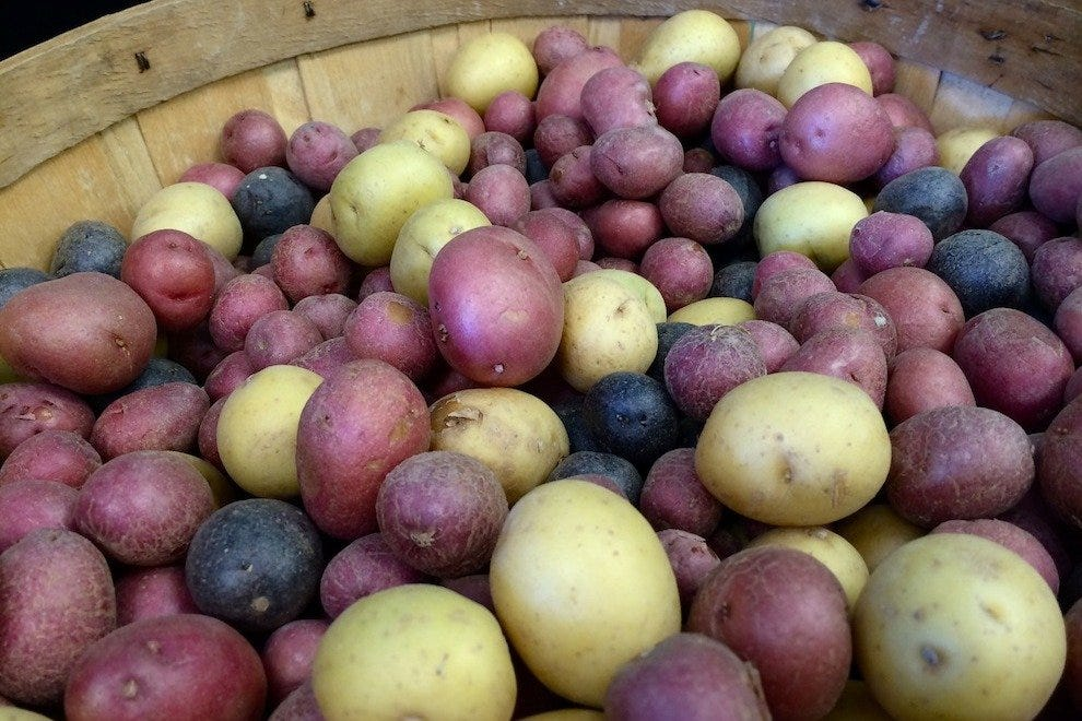 These fingerling potatoes are a good example of the colorful produce at The Vegetable Bin