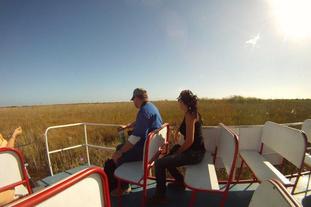 大沼泽地的冒险