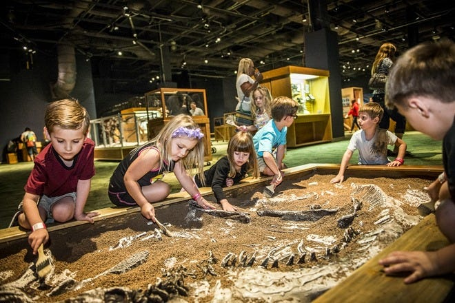 Family-Friendly Museums in Orlando
