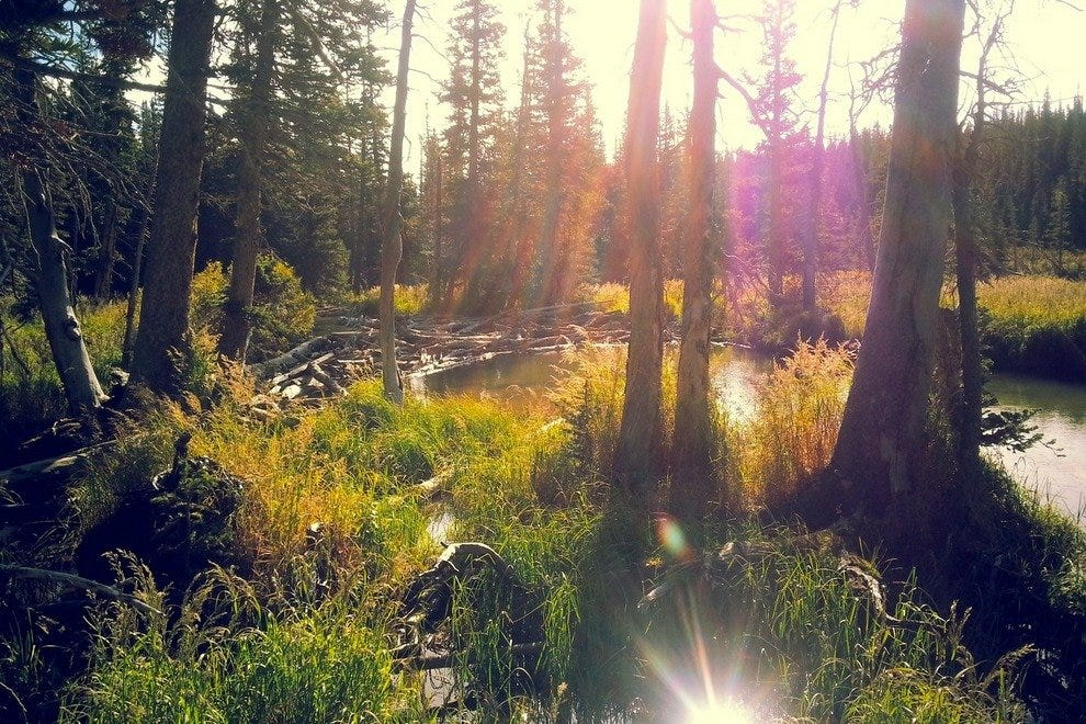 Campgrounds: Attractions in Boulder