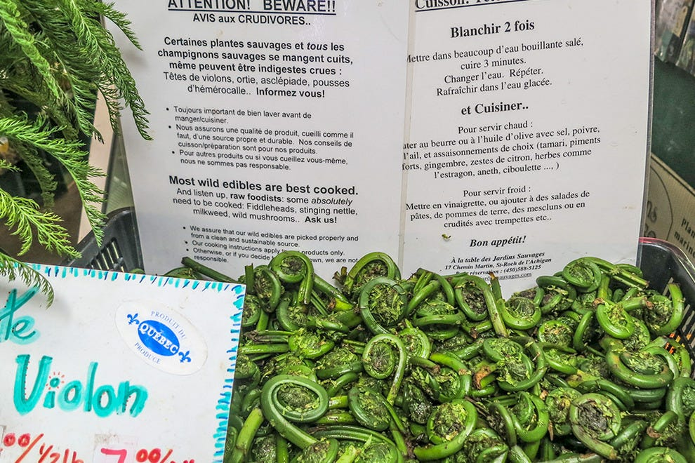Fiddleheads for sale at Jean-Talon Market