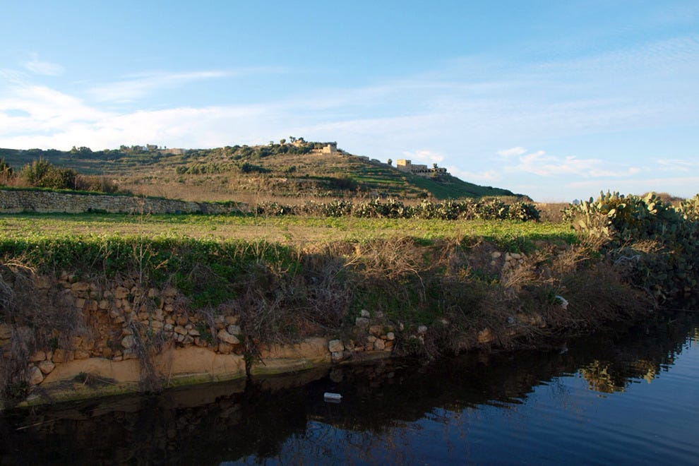Malta and sister island Gozo are teeming with indigenous wine