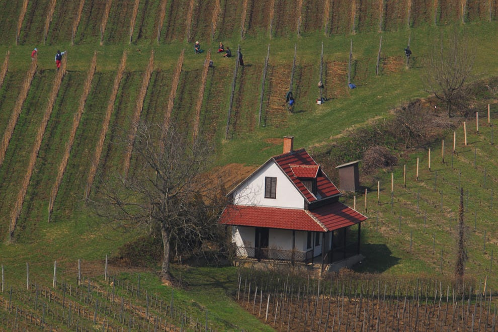 Tokaj is one of Hungary's most famous wine regions