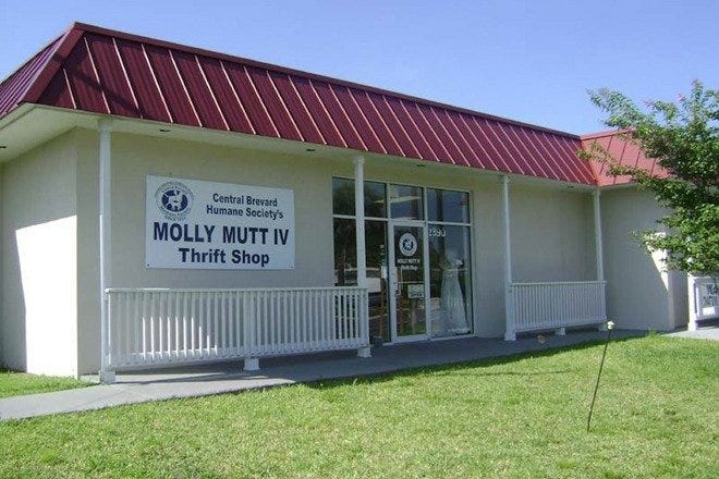 Molly Mutt Thrift Shop