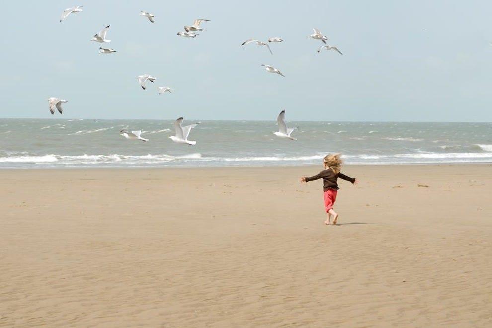 海贝套房度假村是生态旅游的最佳选择。