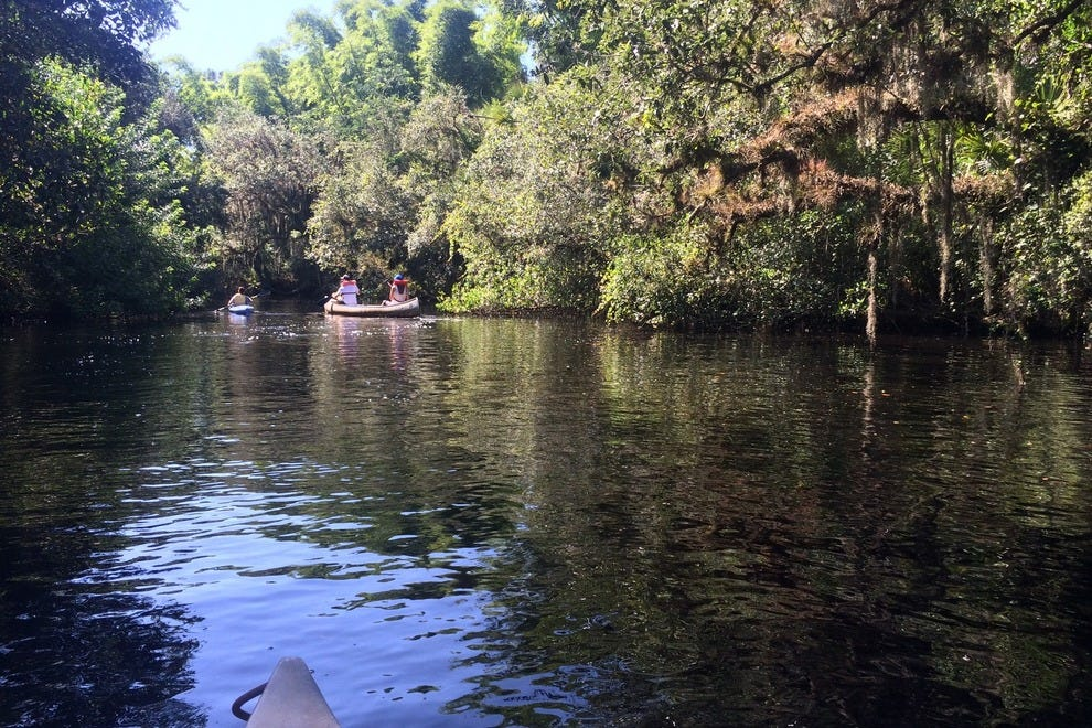Check Bunulu's calendar for canoeing adventures on the Estero River