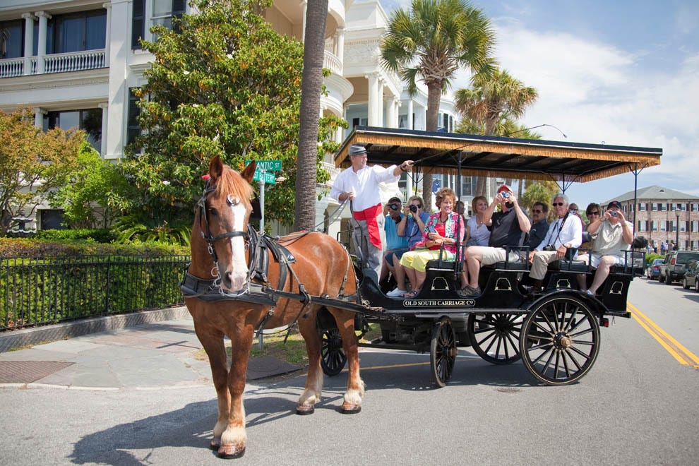 Image result for old south carriage company charleston