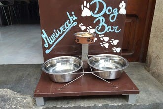 Murivecchi Launches a Doggy Bar near Park Ciutadella