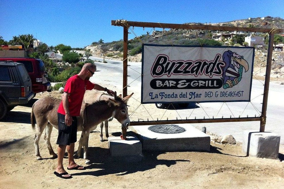 Buzzards Bar and Grill