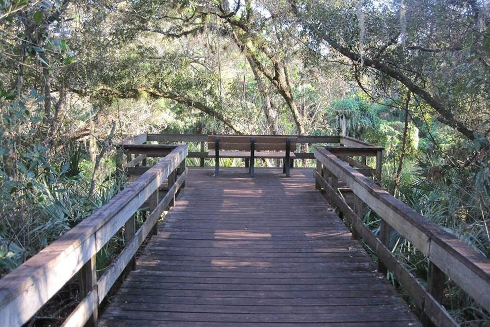 A peek inside Turkey Creek Sanctuary in Palm Bay, Fla.