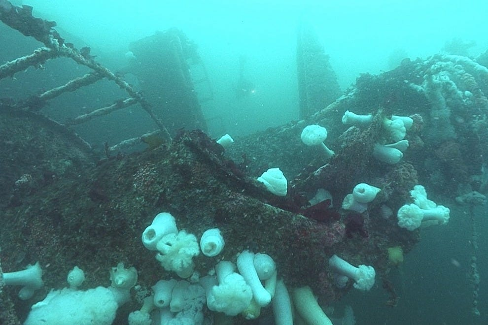 Cool and Creepy Shipwrecks To Thrill Young Divers