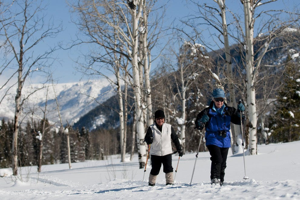 Explore the snowy wilderness of Vista Verde
