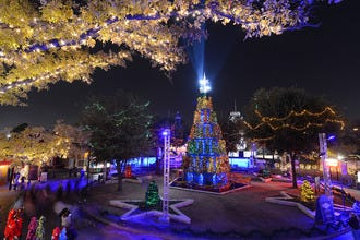 Best Theme Park Holiday Event Winners: 2015 10Best Readers ...
