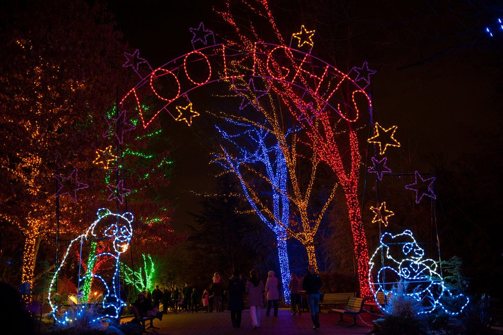 Best Zoo Lights Winners 2015 10best Readers Choice