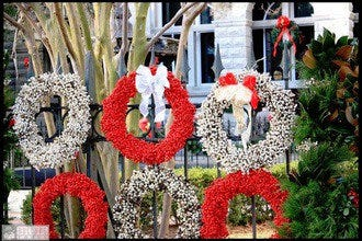 Charleston Strolls Holiday Walking Tours