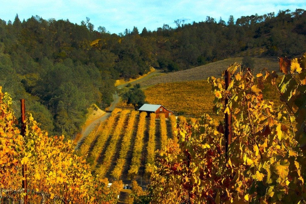 Explore the Hills and Dales of Sonoma County
