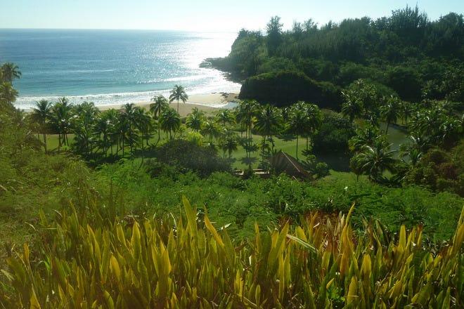 Vote best botanical garden nominees 2016 10best readers - National tropical botanical garden ...
