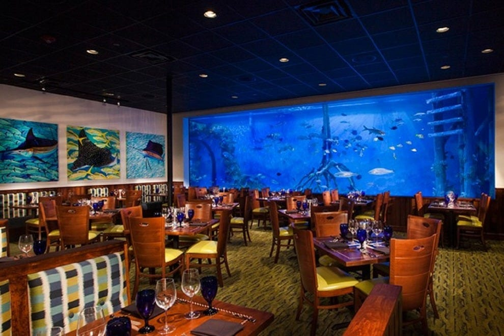 Fancy Restaurants In St Petersburg Florida