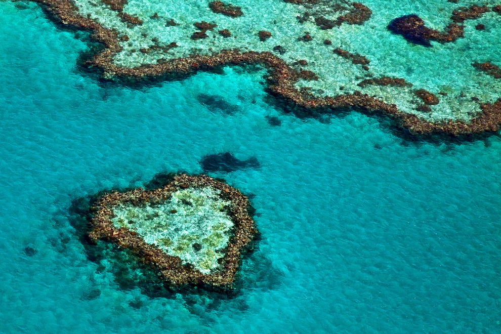 The Great Barrier Reef Is Disappearing. Can Tourism Save It?