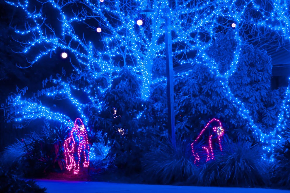 Best Zoo Lights Winners: 2016 10Best Readers' Choice Travel Awards